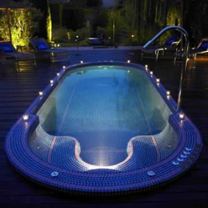 Well Maintaned Swim spa